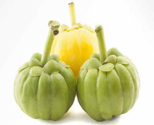 top choices of garcinia make losing weight easy